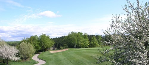 38++ Chestnut valley golf course harbor springs michigan viral