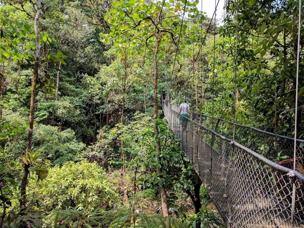Walking bridge in Costa Rica
